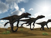 <p>Tyrannosaurus rex looked the most ferocious of all the dinosaurs, but in terms of overall cunning, determination and its array of vicious weapons it was Utahraptor that was probably the fiercest of all. Utahraptor measured about 7 metres, and was a very powerful, agile and intelligent predator.</p>