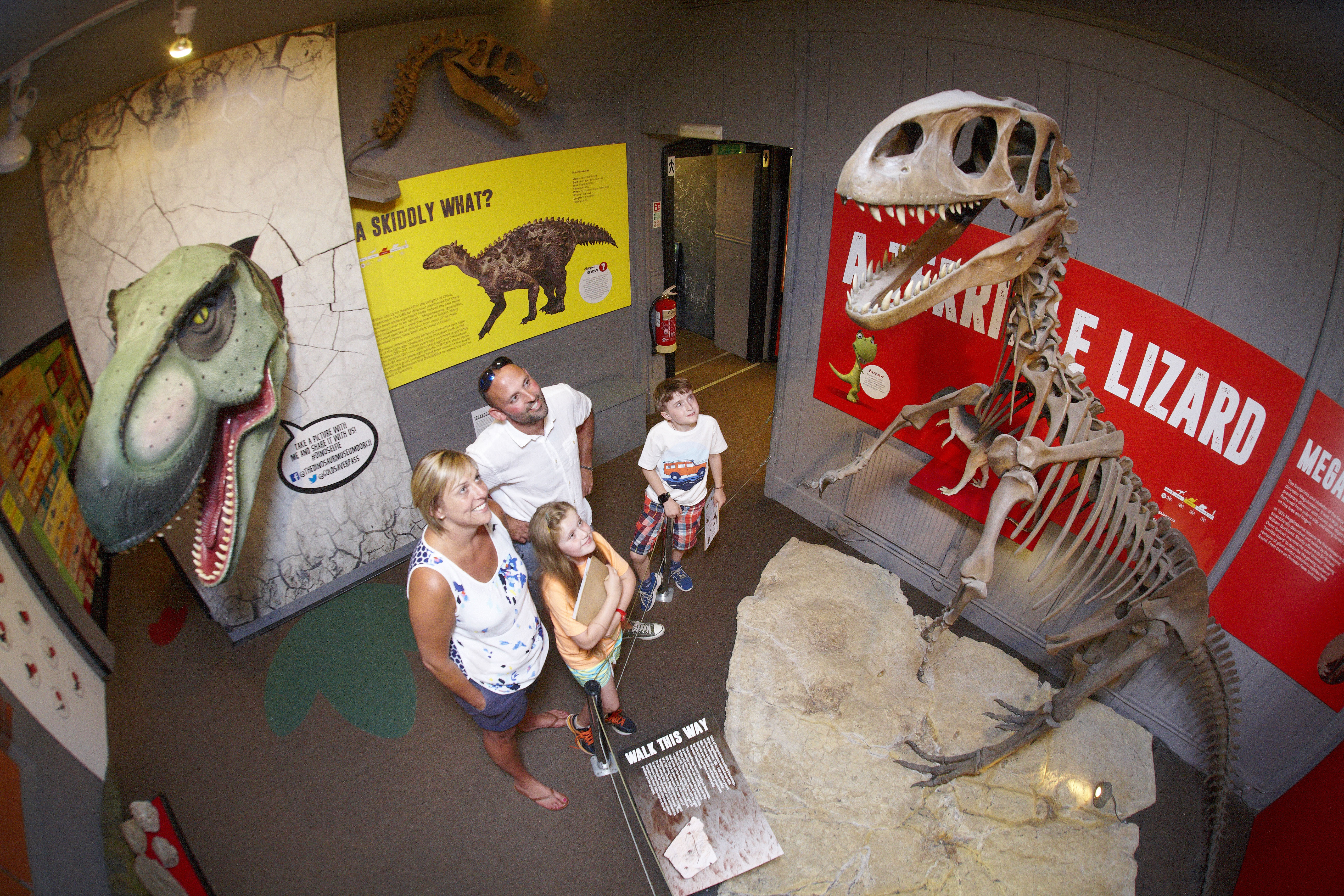 Opening Times - The Dinosaur Museum